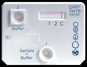 DPP VetTB Cervid Cassette Negative
